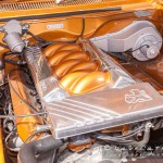 Hot Rods in the Park-Yanchep National Park-Yanchep-_MG_5739-MADCAT-Photography