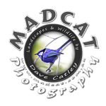 MADCAT Photography