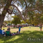 Retro Rewind Concert-Yanchep National Park-Yanchep-_MG_5711-MADCAT-Photography