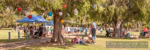 Retro Rewind Concert-Yanchep National Park-Yanchep-_MG_5786-MADCAT-Photography