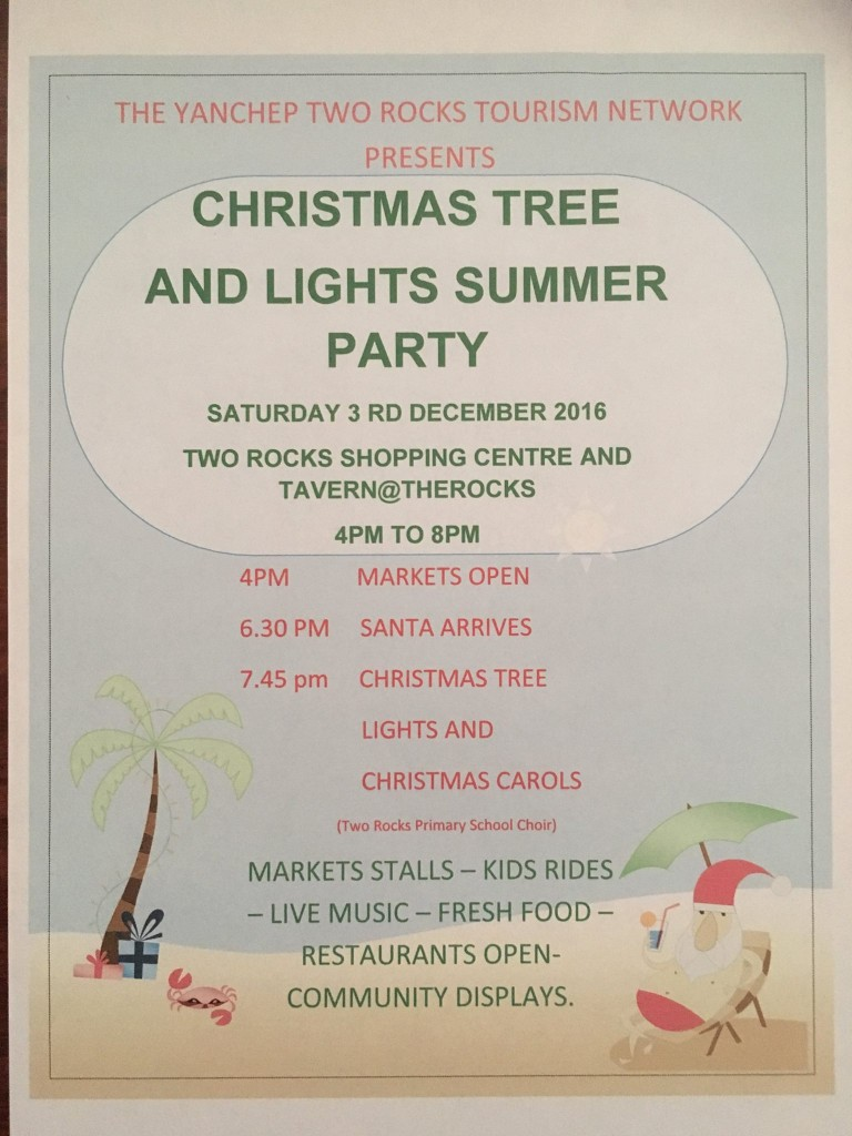 Christmas Tree and Lights Summer Party 2016