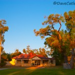 Tearooms-Yanchep-National-Park-Perth-YPV1.10-V1-TH1
