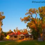 Tearooms-Yanchep-National-Park-Perth-YPV1.10-V1-TH1