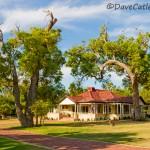 Tearooms-Yanchep-National-Park-Perth-YPV1.12-V1-TH1