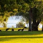 Wagardu-Lake-Yanchep-National-Park-Perth-YPV1.9-V1-TH1